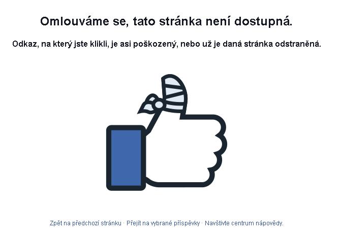 facebook-vypadek1