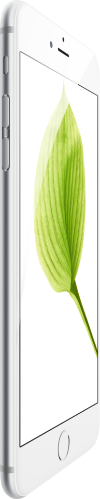 iPhone 6 bok