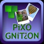 Pixognition logo